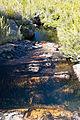Riacho trilha Agulhas Negras.jpg