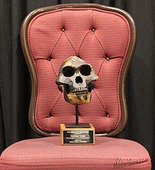 richard dawkins award wikipedia