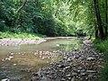 Right Fork Holly River.jpg