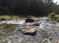 Rio piedras.png