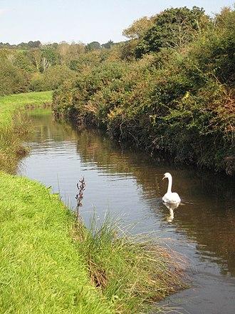 River Cober - The Cober near Helston
