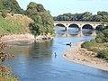 River Tweed at Coldstream - geograph.org.uk - 1363903.jpg
