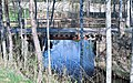 River of swamp water - panoramio - Janne Ranta.jpg
