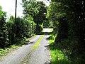 Road at Drumagelvin - geograph.org.uk - 1446912.jpg