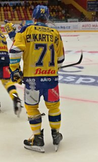 Roberts Bukarts Latvian professional ice hockey forward