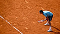 Roger Federer at the 2009 French Open 4.jpg
