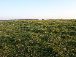 Roman temple site, Lowbury Hill, Oxfordshire 06