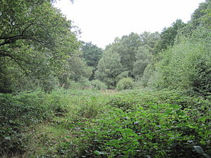 Rowley Green Common - Image: Rowley Green Common