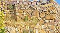 Ruinas arqueológicas de la Isla del Sol - L-00-29 --.JPG