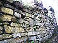 Ruine Hirschstein.jpg