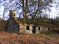 Ruined cottage - Gwern y Baedd - geograph.org.uk - 1376276.jpg