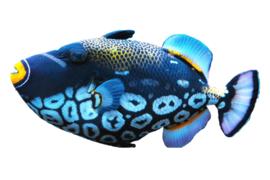 Särkänniemi - fish
