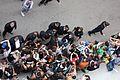 SDCC 2014 - Norman Reedus (14746646635).jpg