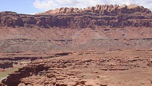 Stratum - The Permian through Jurassic strata in the Colorado Plateau area of southeastern Utah demonstrates the principles of stratigraphy.  These strata make up much of the famous prominent rock formations in widely spaced protected areas such as Capitol Reef National Park and Canyonlands National Park.  From top to bottom: Rounded tan domes of the Navajo Sandstone, layered red Kayenta Formation, cliff-forming, vertically jointed, red Wingate Sandstone, slope-forming, purplish Chinle Formation, layered, lighter-red Moenkopi Formation, and white, layered Cutler Formation sandstone.  Picture from Glen Canyon National Recreation Area, Utah.