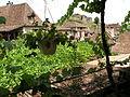 Saint-Cirq-Lapopie Toits 11.JPG