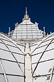 San Francisco Conservatory of Flowers-49.jpg