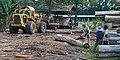 Sandakan Sabah Sawmill-02.jpg