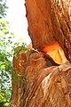 Sandstone Carving inside Hidden Canyon - panoramio.jpg