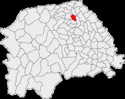 Vị trí của Satu Mare