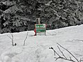 Schnee am Arber.jpg