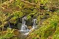 Schonach im Schwarzwald - entlang der Elz Bild 2.jpg