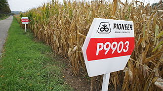 DuPont Pioneer - Presentation of Pioneer's corn seeds near Lahr in Germany