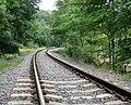 Severn Valley Railway - geograph.org.uk - 493450.jpg