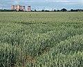 Shaftholme farmland - geograph.org.uk - 845528.jpg