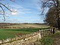 Sheep pasture above Upper Slaughter - geograph.org.uk - 455441.jpg