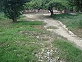 Sheesh Mahal, Shalimar Bagh, Delhi- 17.JPG