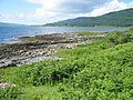 Shore of Loch Beg - geograph.org.uk - 198505.jpg