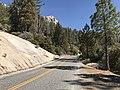 Sierra National Forest, Oakhurst, United States Oct 15, 2017 125954 PM.jpeg