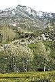 Sierra del Cabezo 2.jpg