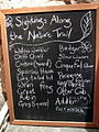 Sightings along Nant-y-Coy nature trail - geograph.org.uk - 1011174.jpg