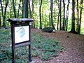 Silbersandquelle-Felsenpfad-Frauenbrunnen-Wolfgangbrunnen-Geoweg 003.jpg