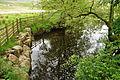 Snaizeholme Beck (7049).jpg