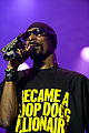 Snoop Dogg @ Døgnvill 2009 01.jpg