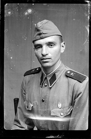 Romanian Land Forces - Romanian artillery soldier with shirt and cap model 1952, epaulettes and service branch pin model 1948