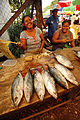 Solomon Islands (10721477205).jpg
