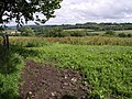 Southeast from Barley Hill - geograph.org.uk - 481120.jpg