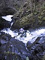 Soutra Gorge - geograph.org.uk - 144460.jpg