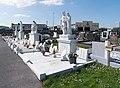St. Kieran's Cemetery, Kilkenny - 128560 (34740441746).jpg