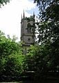 St Mary Magdalene, Stapleford, Leics - geograph.org.uk - 385032.jpg
