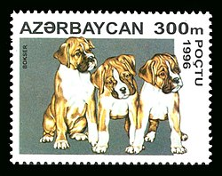 Stamps of Azerbaijan, 1996-403.jpg