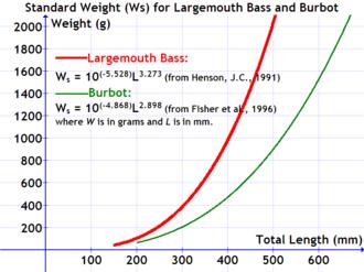 Standard weight in fish - Image: Standard weight largemouth bass burbot