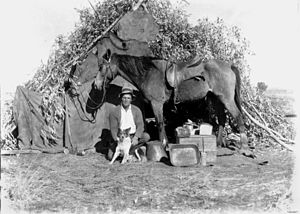 Frontier - Australian bushman with his dog and horse, c. 1910