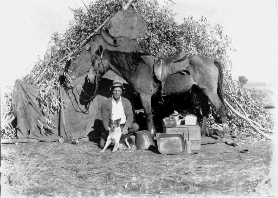StateLibQld 1 113072 Bushman with his dog and horse outside a humpy, Hughenden district^, 1910-1920