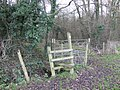 Stile and footpath - geograph.org.uk - 307400.jpg