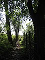 Stile on a permissive path - geograph.org.uk - 980302.jpg
