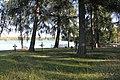 Stjärnsunds begravningsplats 04.JPG
